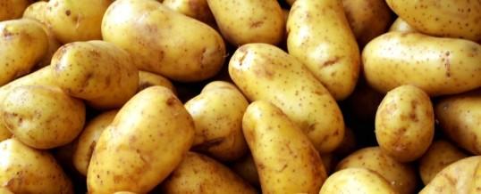 Ode aan de aardappel